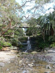 Passing a waterfall on the Manly to Spit walk in Sydney
