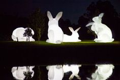 Amanda Parer's Giant Glowing Bunnies Take Over Park at North Carolina Museum of Art