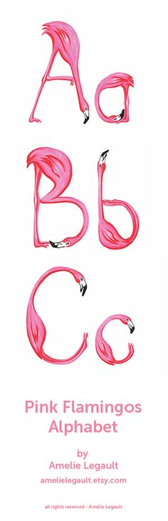 Pink Flamingos Alphabet by Amelie Legault, available on Etsy here: https://www.etsy.com/ca/listing/150487855/pink-flamingos-alphabet-abc-print?ref=shop_home_active_1  #alphabet #abc #amelielegault #pinkflamingo #lettering #etsy #nurseryart  ALL RIGHTS RESERVED - Amelie Legault