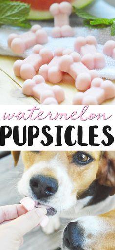 Puppy Treats, Diy Dog Treats, Healthy Dog Treats, Treats For Puppies, Summer Dog Treats, Frozen Dog Treats, Dog Biscuit Recipes, Dog Food Recipes, Pet Dogs