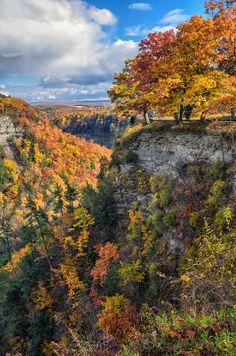 nature's colors, Letchworth State Park, New York | Mark Papke, Fine Art America