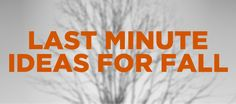 12 Last-Minute Youth Ministry Ideas for Autumn