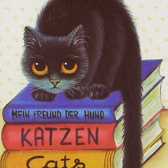 #کتاب #کتاب_فروشی #فروشگاه_آنلاین  #رمان_خارجی  #بهترین_رمان  #پرفروشترین_کتابها  #گربه #پرشین_کت  #تیتاس #کتابدونی  #معرفی_کتاب #نتورکر #بازاریابی  #book  #cat #pershian #tittas