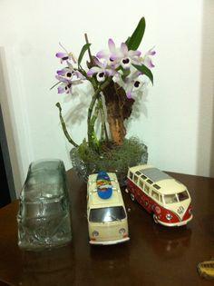 Kombis e orquídeas  Amo demais