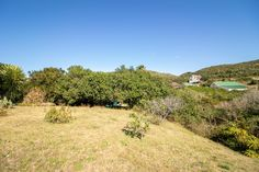 Large Plot with Country Views For Sale in Port Alfred