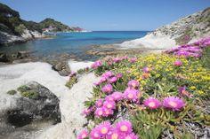 Visita Virtuale Boutique Hotel Ilio Isola d'Elba - Toscana