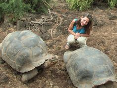 Galapagos, to see all the amazing animals in their natural habitats.