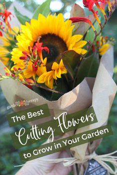 garden care tips Cut Flower Gardening: The Best Cutting Flowers + Growing amp; Harvesting Tips Garden Care, Garden Soil, Garden Landscaping, Growing Flowers, Cut Flowers, Planting Flowers, Cut Flower Garden, Flower Farm, Flower Gardening