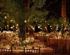 Bringing the garden indoors. What about taller centerpieces like these, and an ivy backdrop for the divan/sweetheart table, instead of Indian drapery?