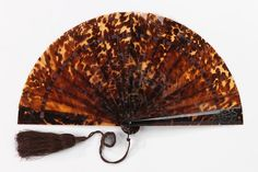 Tortoiseshell Fan    1875-1889