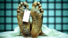 Учёные выяснили, сколько человек живёт после смерти  • Любопытные факты обо всём на свете