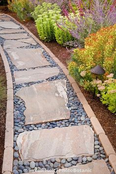 Stepping Stone Rock Path In Drought Tolerant California Garden, Pebbles  With Pavers, Garden Pathway, Garden Paths