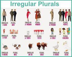 Forum | ________ Learn English | Fluent LandIrregular Plurals in English | Fluent Land