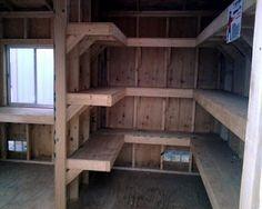 Shed Talk: DIY Interior walls and shelves help organize.