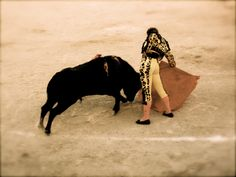 Corrida de Toros en Guanajuato. Baja California, Beautiful Places, Animals, Running, Fotografia, Style, Projects, Animales, Animaux