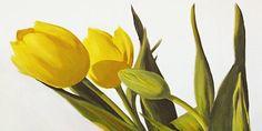 Tulpen von Gerd Pflumm