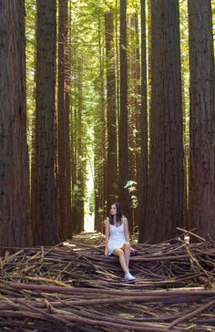 Redwood Forest Photoshoot  Model/ Photographer: Jamie Binnion Girl Photo Shoots, Forest Girl, Redwood Forest, Senior Pictures, Senior Pics, Model Photographers, Photo And Video, World, Nature