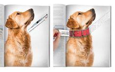 Anúncio da ONG protetoras dos animais ASPCA    Leia mais: http://lounge.obviousmag.org/tempos_liquidos/2012/04/quando-a-publicidade-acert.html#ixzz1tMNRDiYA