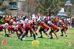 Galería Fotográfica recordando el campeonato de Halcones intermedia en Aguascalientes ~ Ags Sports