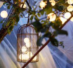 Illuminazione a energia solare all'interno di una gabbia per uccelli appesa al ramo di un melo