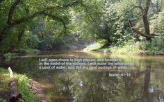 Isaiah 41 and 18