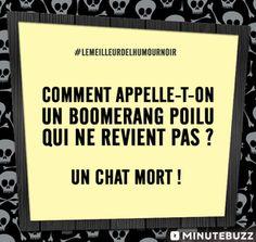 Humour Noir  I'm a fucking looser ! :D  Wattpad