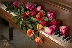 Pink Red & orange roses lying on top of piano keys Beautiful Roses, Beautiful Flowers, Romantic Roses, Piano Pictures, Music Pictures, Love Is A Choice, Rose Perfume, Piano Keys, Orange Roses