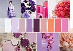 my color for 2015ss