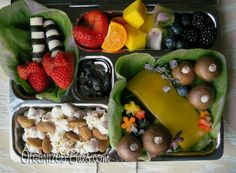 Welcome to Oz - healthy bento lunch with OZ theme