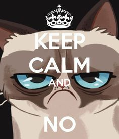 KEEP CALM AND NO. Another original poster design created with the Keep Calm-o-matic. Buy this design or create your own original Keep Calm design now. Keep Calm Posters, Keep Calm Quotes, Cat Quotes, Funny Quotes, Life Quotes, Mood Quotes, Funny Memes, Keep Calm Pictures, Keep Calm Signs