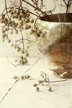 I neutral l Wabi Sabi, Deco Floral, Seed Pods, Still Life Photography, Earth Tones, Decoration, Neutral Colors, Earthy, Beige