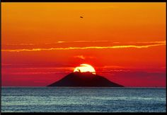 ...roku's island...