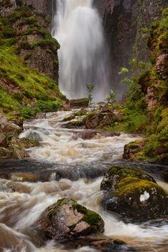 Wailing Widow Falls. Rowan Sapling. Assynt. Highland Scotland.