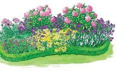Rosa Blut-Storchschnabel und weiße Katzenminze sorgen bis in den August hinein für zauberhaften Blütenschmuck. Die niedrige Buchsbaumhecke bildet einen schönen Rahmen