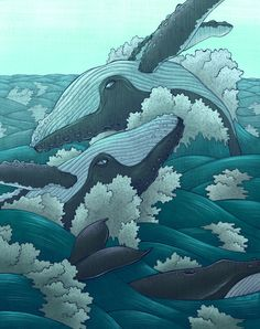 """victoriousvocabulary: """" CETACEA [noun] the order Cetacea includes the marine mammals commonly known as whales, dolphins, and porpoises. Cetus is Latin and is used in biological names to mean """"whale""""; its original meaning, """"large sea animal"""", was more. Art And Illustration, Illustrations, Whale Song, Whale Art, Whale Tattoos, Wale, Blue Whale, Sea Monsters, Sea Creatures"""