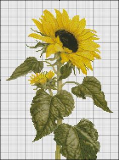 Sunflower cross stitch.