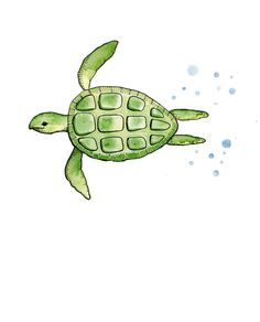 Sea turtle watercolour by Sarah Coyne, via a place for art. Prints are on http://www.etsy.com/listing/96912032/print-of-original-watercolor-painting