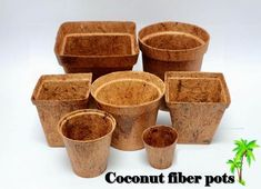 Benefits of using Organic Coir Pots (Coco Pots) - Pots remain stable above ground for a year and biodegrade in the soil after 2 – 3 month. Coconut Flower, Urban Garden Design, Coconut Benefits, Plant Basket, Earth Design, Green Technology, Scrap Metal Art, Coir, Growing Vegetables