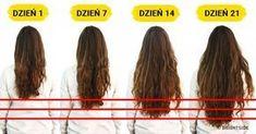 7 Foods You Need to Accelerate Hair Growth - Hair Loss Treatment New Hair Growth, Healthy Hair Growth, Natural Hair Growth, Natural Hair Styles, Long Hair Styles, Quick Hair Growth, Natural Beauty, Help Hair Grow, Grow Long Hair