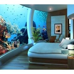 Aquariums Design....B would love this. He can have that salt water tank he wants and I can watch Nemo and Dori swim around while I go to sleep!