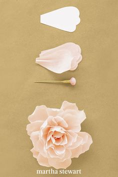 To create this crepe paper peony, use 35 petals and a button stamen, which you can download by visiting our website. First, shape petals to cup inward slightly, pleat base of each petal; pinch folds in place. Attach to stamen, positioning innermost petals low, with midpoints at stamen's head; raise each subsequent ring of petals slightly. Curl tips of petals inward. #marthastewart #crafts #diyideas #easycrafts  #tutorials #hobby Paper Flowers Craft, Flower Crafts, Diy Flowers, Fabric Flowers, Paper Crafts, Paper Garlands, Flower Paper, Canvas Crafts, Paper Decorations
