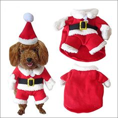 NACOCO Pet Christmas Costumes Dog Suit with Cap Santa Claus Suit Dog Hoodies Cat Xmas costumes >>> For more information, visit image link. (This is an affiliate link and I receive a commission for the sales)