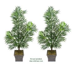 TWO 6' Artificial Phoenix Areca Palm Trees, with No Pot, *** Want to know more, click on the image.