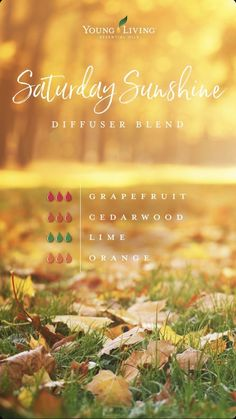 Saturday Sunshine diffuser blend combines Grapefruit, Cedarwood, Lime, and Orange essential oils, you'll be walking on sunshine all day long. Young Essential Oils, Essential Oils Guide, Doterra Essential Oils, Cedarwood Essential Oil Uses, Wintergreen Essential Oil, Design Facebook, Young Living Diffuser, Essential Oil Combinations, Grapefruit Essential Oil