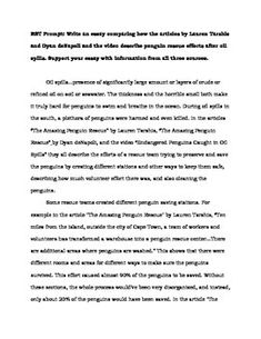 essay about super power