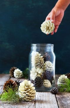 "Make beautiful ""bleached pinecones"" in 5 minutes without bleach! Non-toxic & easy DIY pine cone craft, perfect for fall, winter, Thanksgiving & Christmas decorations! - A Piece of Rainbow #pinecones #pineconecrafts #diy #homedecor #homedecorideas #diyhomedecor #thanksgiving #christmas #christmasdecor #christmascrafts #christmasideas #christmasdecorations #crafts #fall #winter #farmhouse #vintage #farmhousestyle #farmhousedecor #weddingdecor"