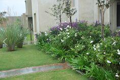 Garden Paths, Garden Landscaping, Tropical Garden, Tropical Plants, Plant Aesthetic, Plant Painting, Garden Living, Unique Gardens, Indoor Plants