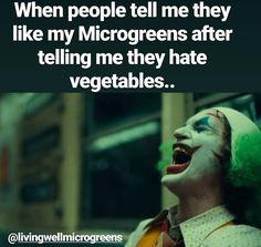 #ASMicrogreens #GrowMicrogreens #Vegan #Vegetarian #urbanfarm #verticalfarming #eatlocal #livefood #organicfood #yycchefs #growmicrogreens #eatmicrogreens #freshproduce #victoria #microgreens #farmlife #farm #sustainable #sustainability #indoorfarming #plantbased #localfood #eatlocal #eatfresh #fresh #plantpower #healthy #local #yyj #yyjchefs #foodie #healthyfood #chef #eathealthy #yum #nutrition Indoor Farming, Micro Farm, Growing Microgreens, Vertical Farming, Organic Seeds, Urban Farming, Organic Recipes, Superfood, Scandinavian Design
