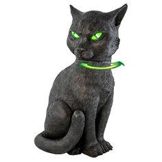 Halloween Animated Cat : Target