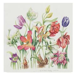 Trademark Fine Art 'Maart Boeket' Acrylic Painting Print on Wrapped Canvas Botanical Flowers, Botanical Illustration, Botanical Prints, Flowers Garden, Watercolor Disney, Watercolor Flowers, Watercolor Art, Artist Canvas, Canvas Art
